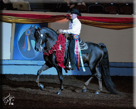 Rick Gervasio & SP Remington, 2015 World Champion Western Pleasure